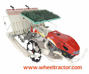 Paddy Transplanting Machine