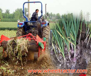 Garlic Harvester