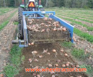 Sweet Potato Harvester